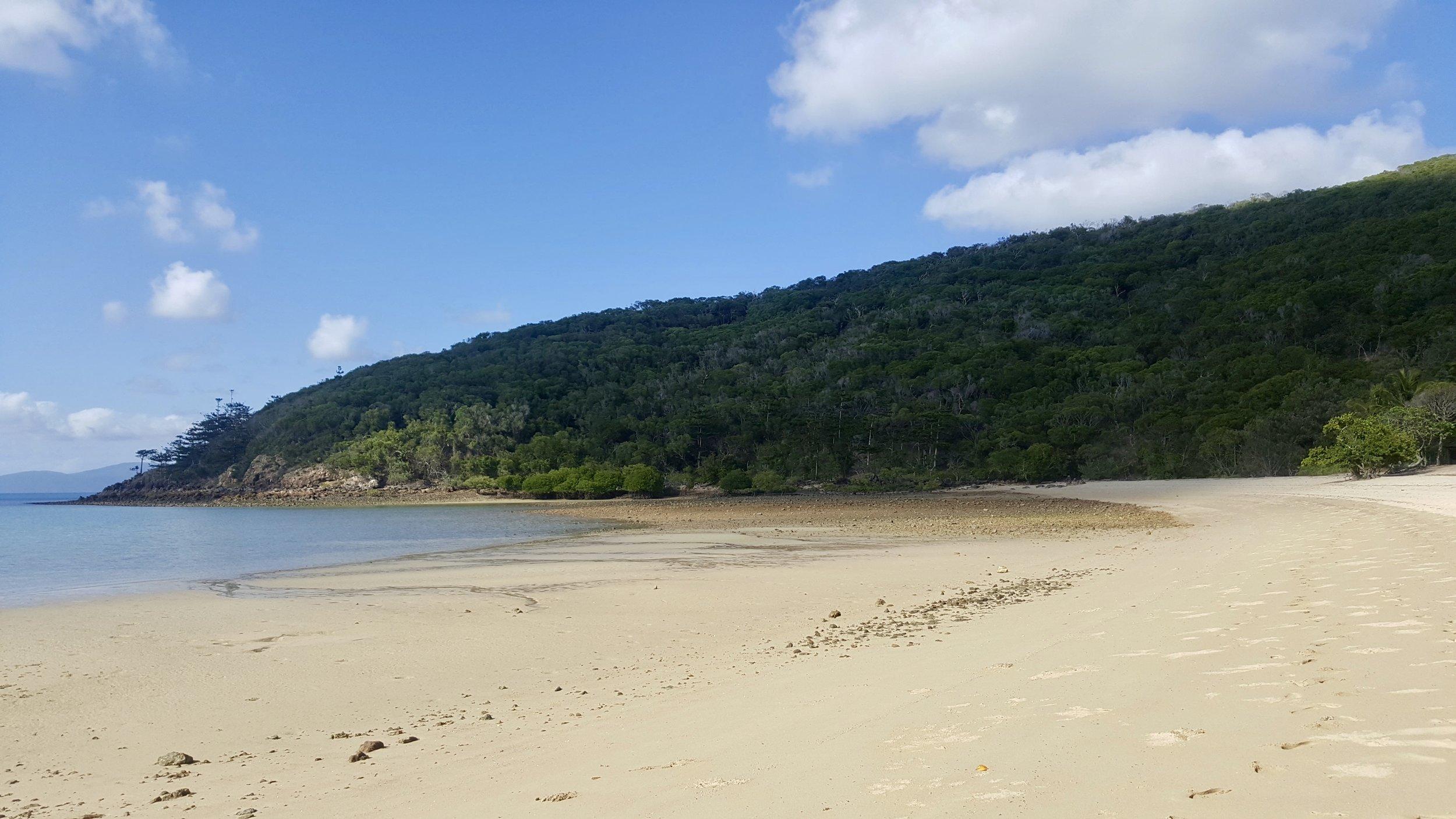 Coral Cove Beach, Hamilton Island, Whitsundays, Queensland, Australia
