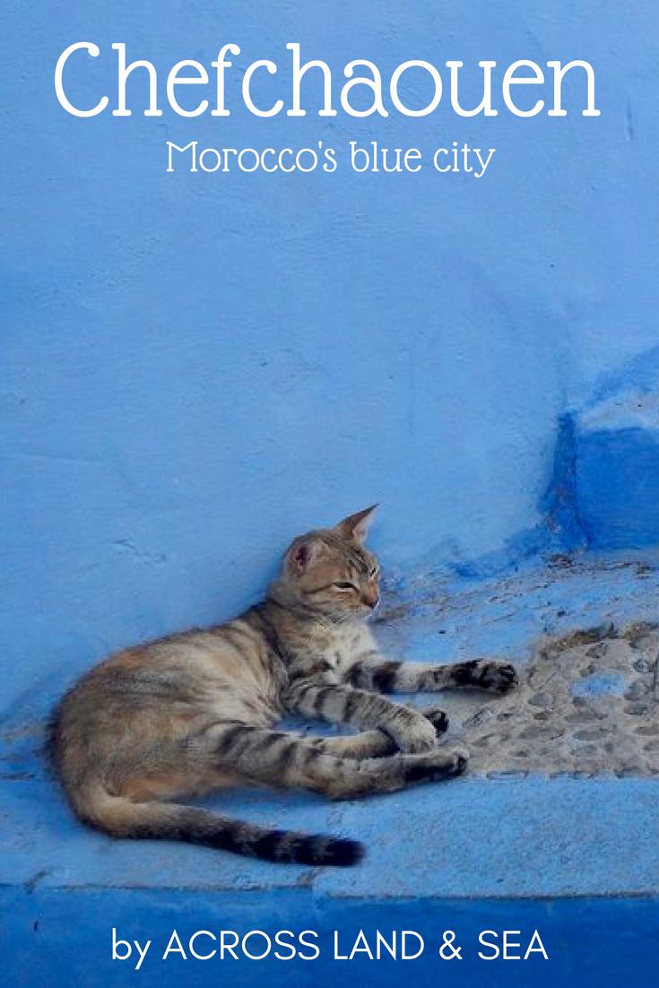 Chefchaouen, Morocco's blue city