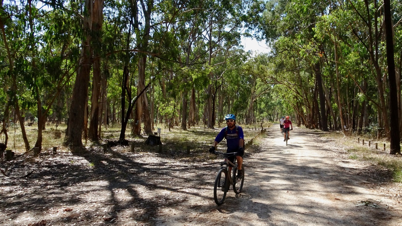Kuitpo Forest Cycling