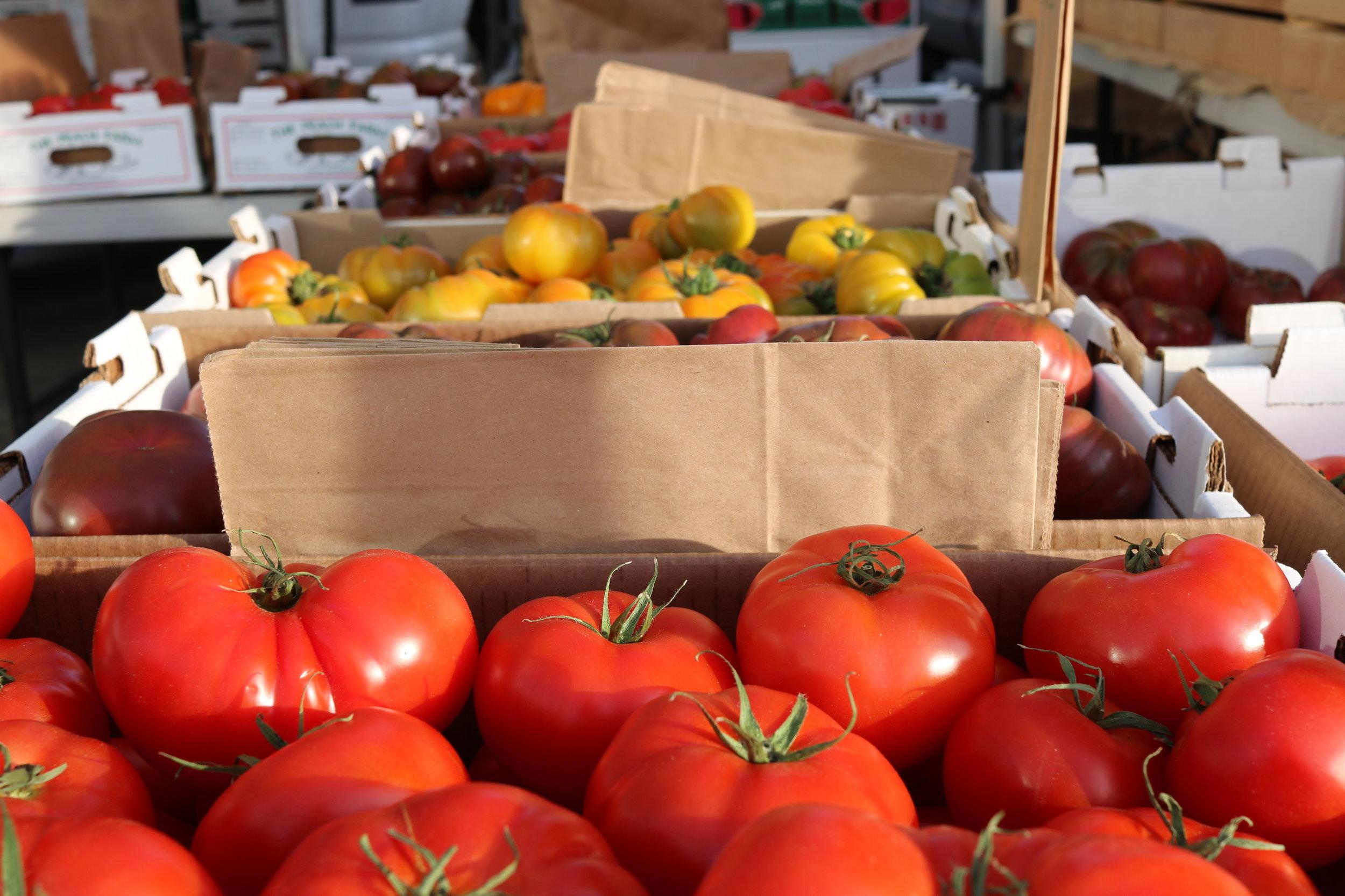 Tomatoes, San Francisco Ferry Building market, @acrosslandsea