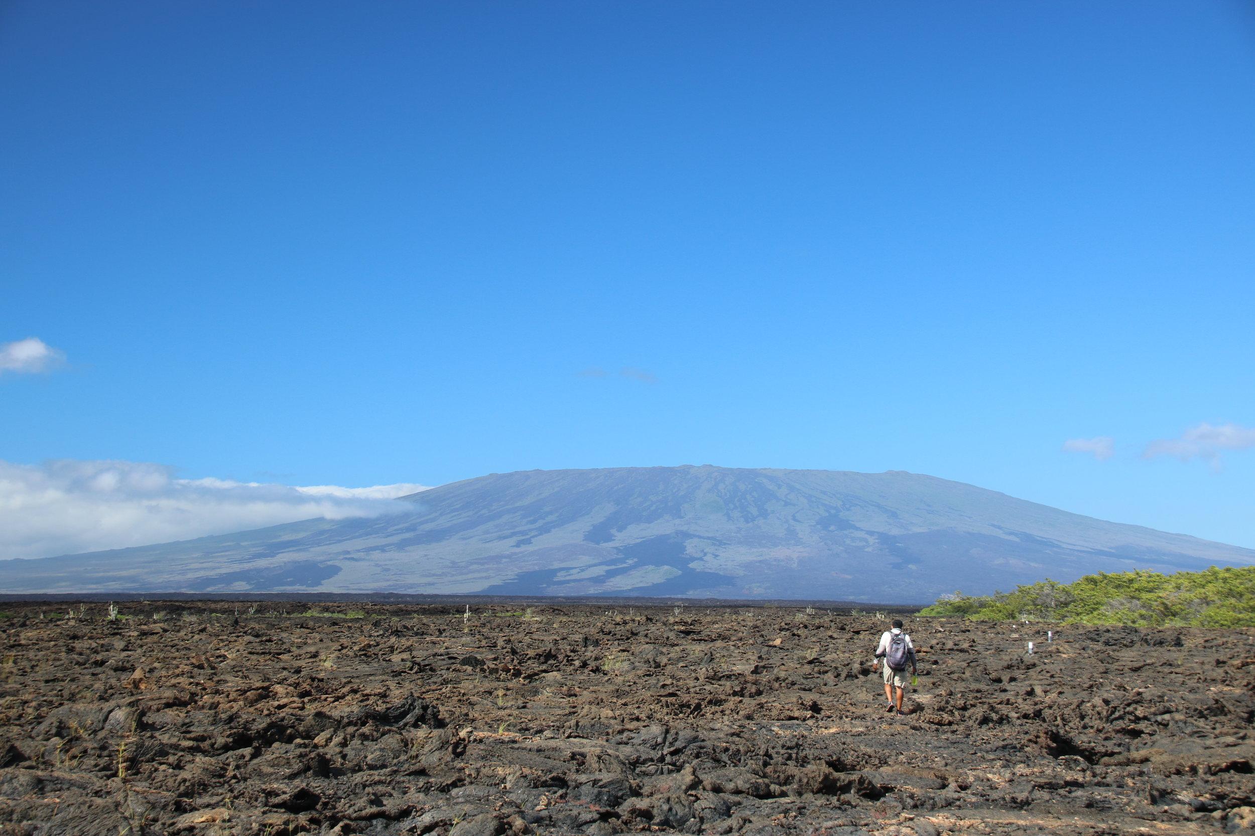 Luis, guide on boat Eden, Galapagos, @acrosslandsea