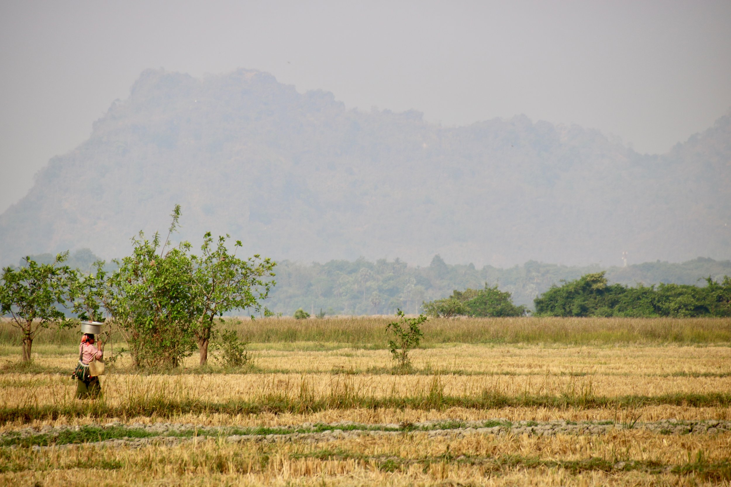 Our definitive guide to Hpa-an, Myanmar. Local woman in field