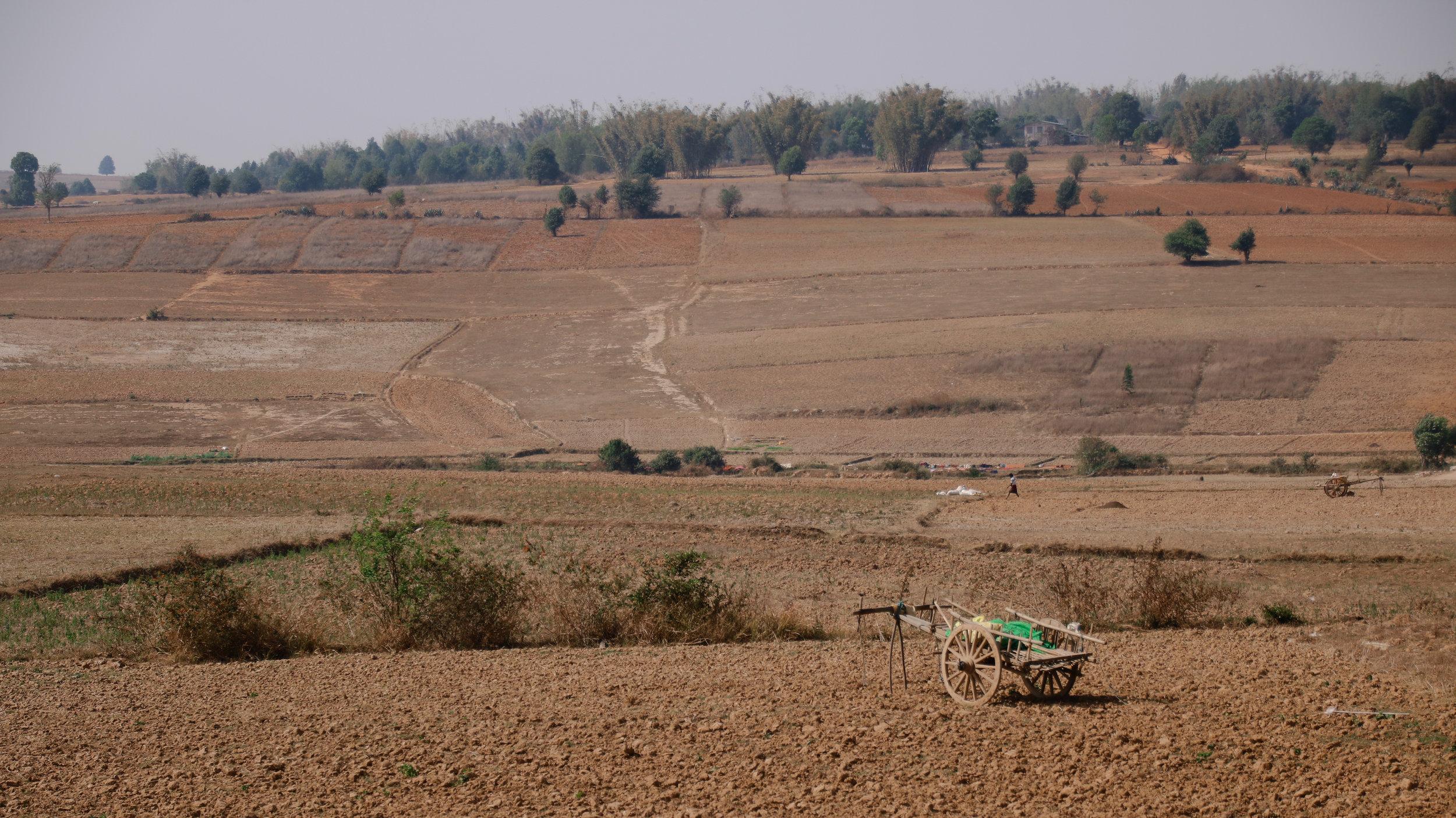 Farming in Myanmar