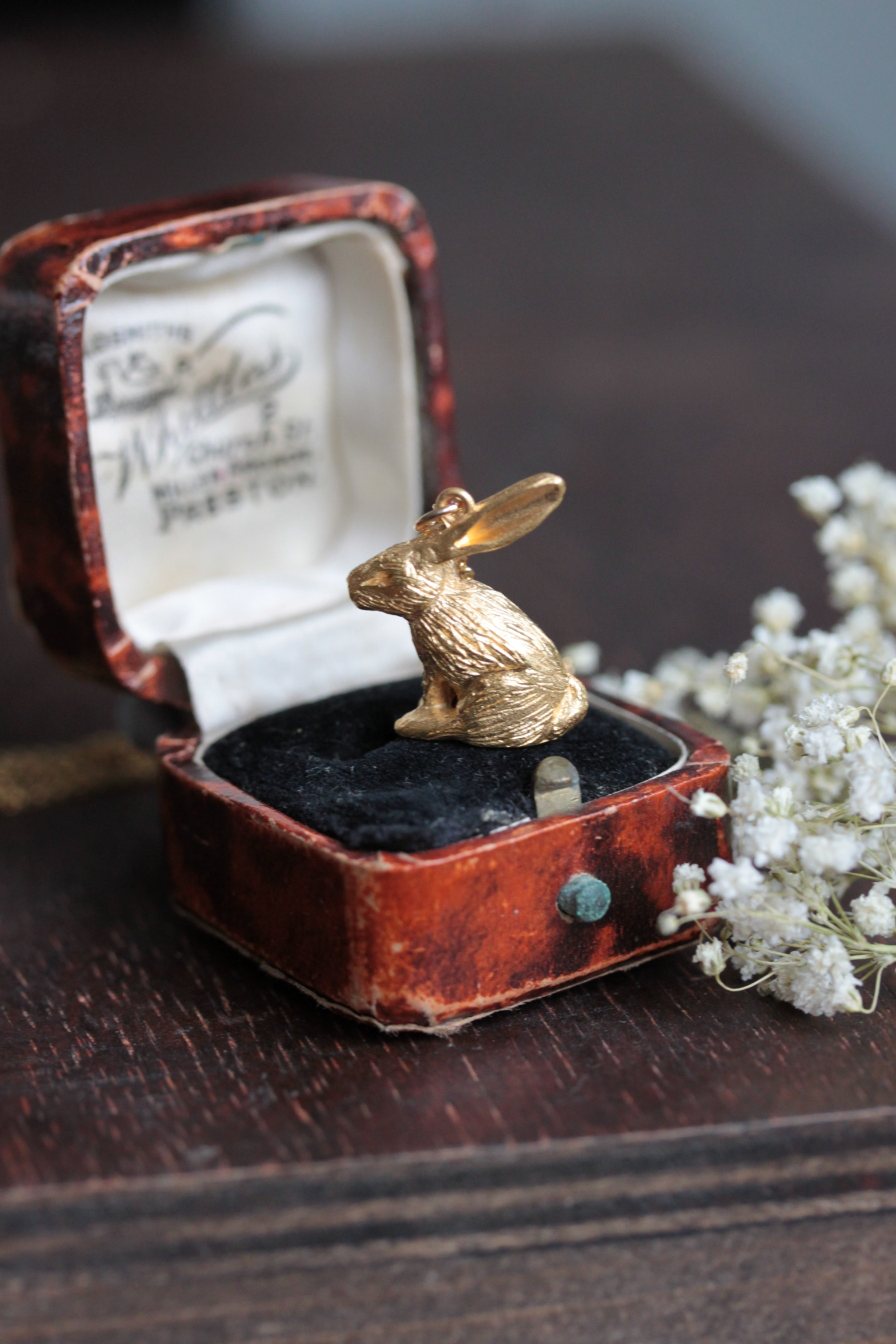 Mister rabbit glimmering in yellow gold.