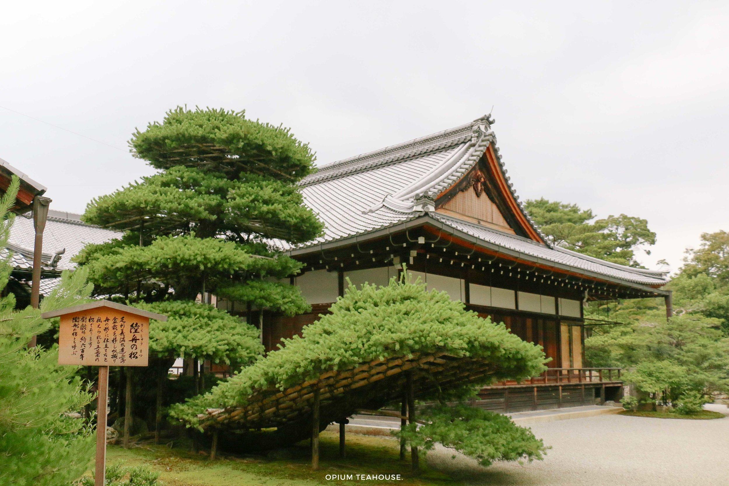 Golden Pavilion Complex Kyoto — OTH