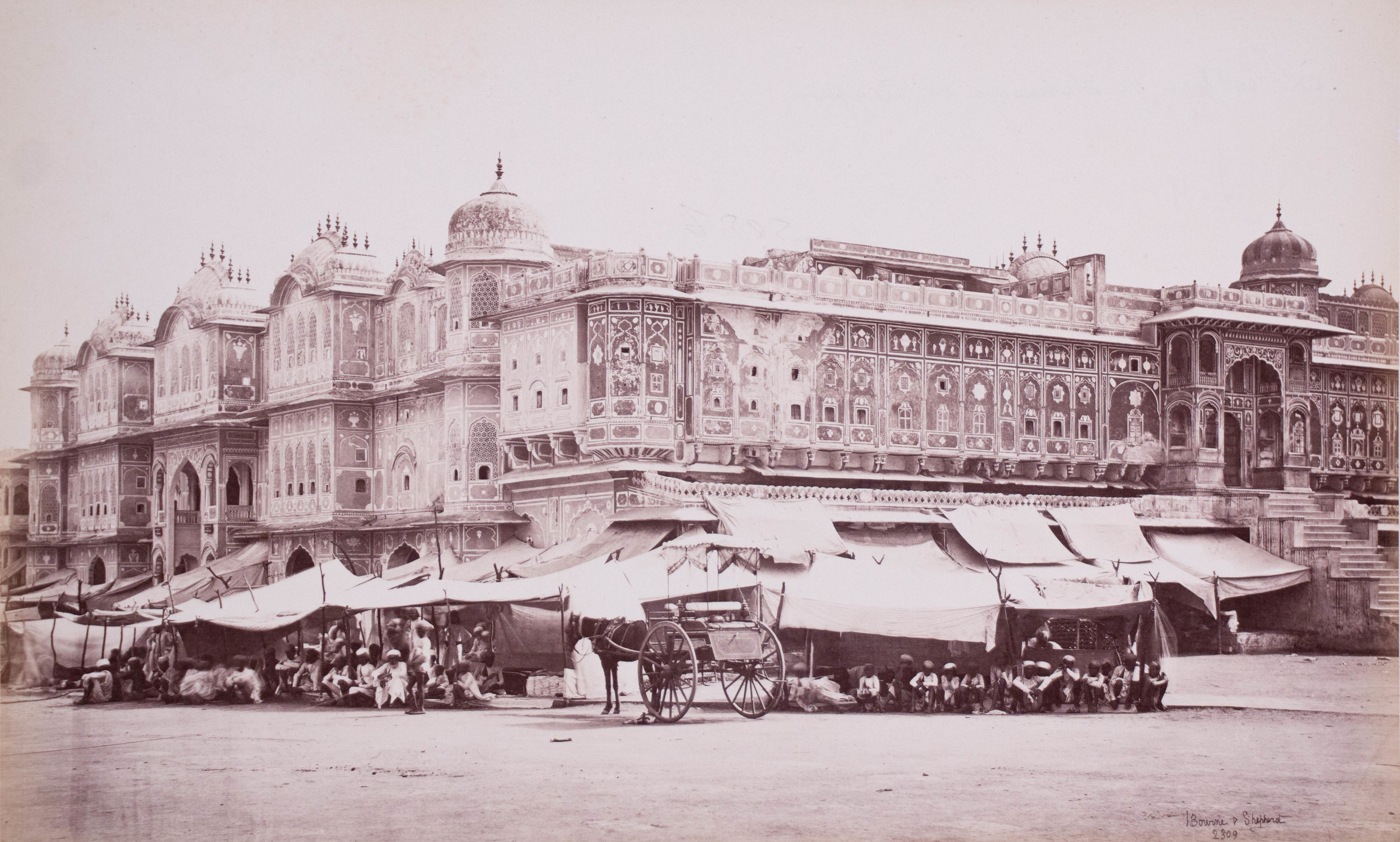 Maharaja's college, Jaipur