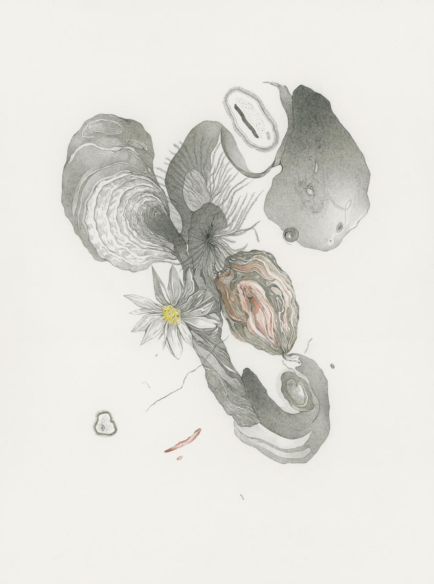 Parlez-moi de votre panthère V , Jul.-Sept.2017, Den Haag-Paris, Pencil, blood, ink and watercolor on paper, 31 x 23 cm