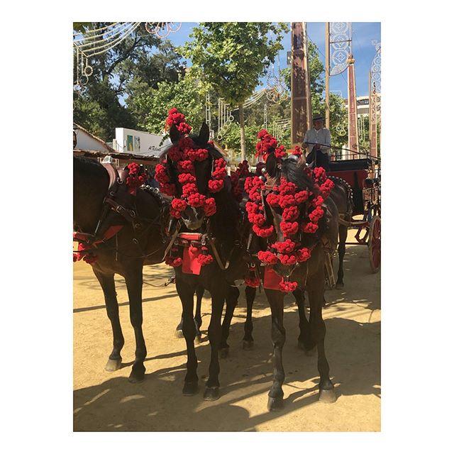 Gratulerer med dagen Norge! Hilsen fra Feria del caballo Jerez