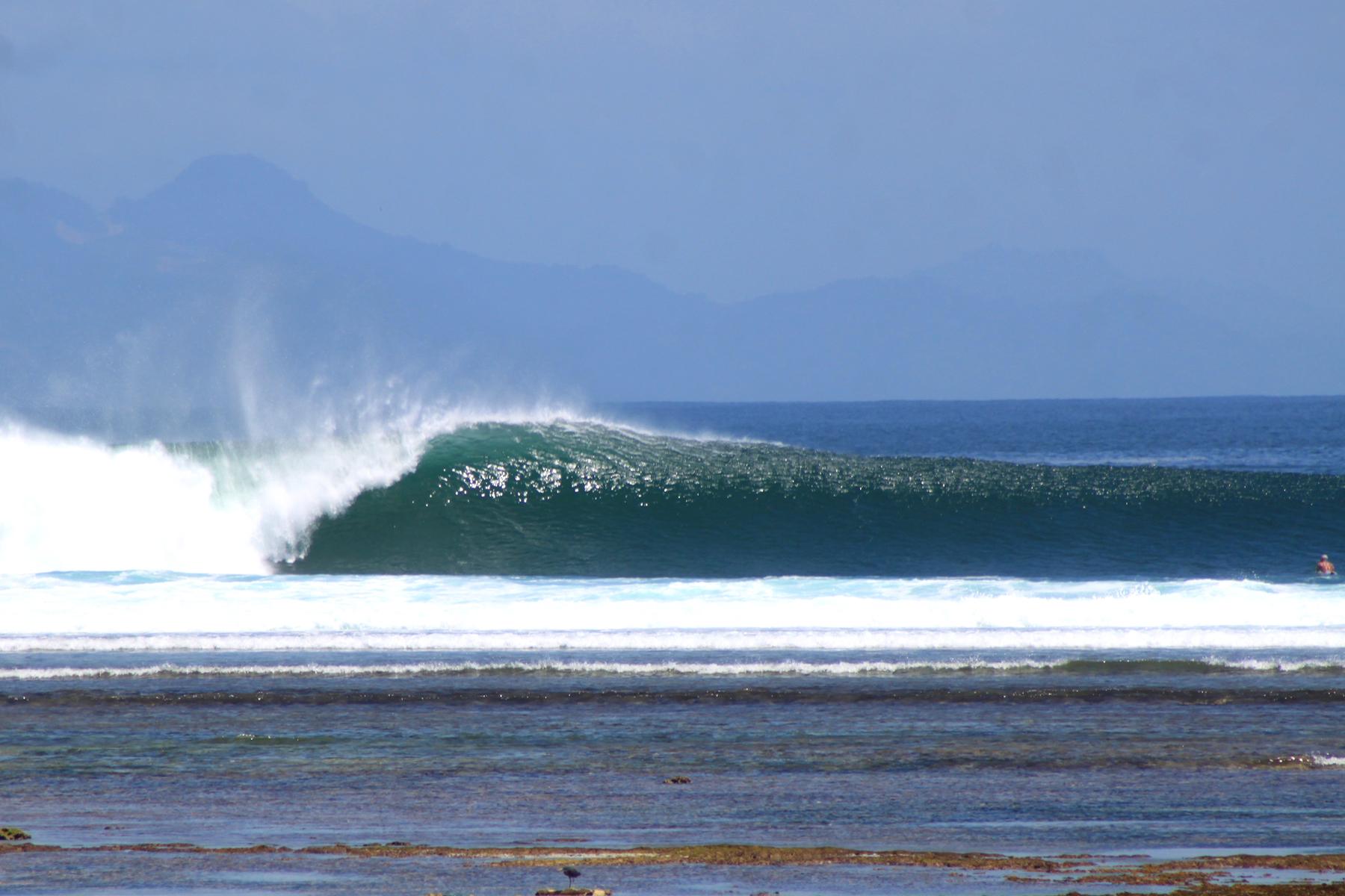 High Tide Speedies (w/ some swell)