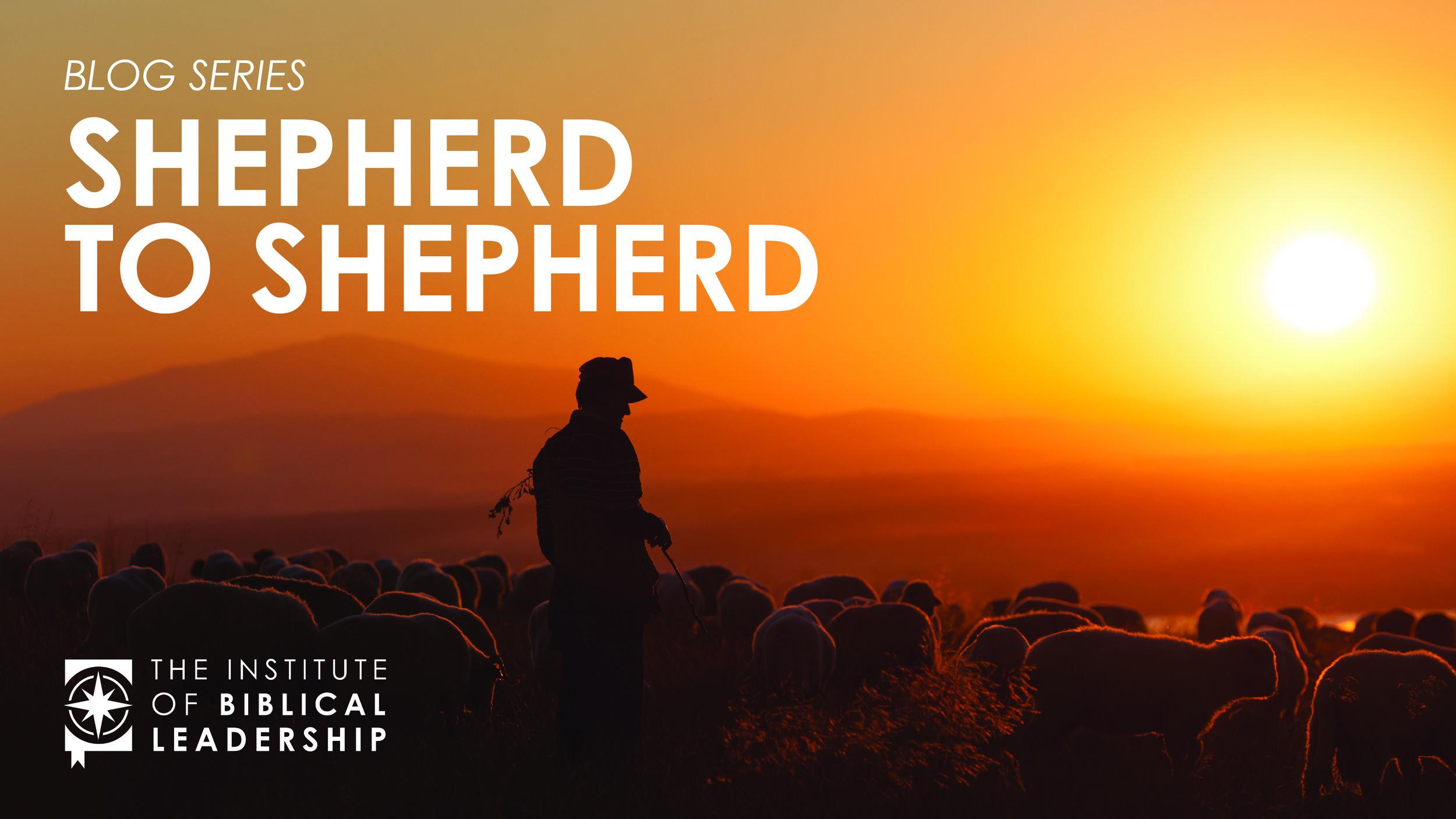 Shepherd to Shepherd IBL Blog