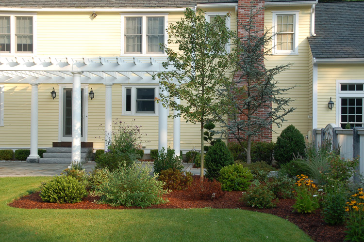 Patio, Lawn and Planter Area, Westford