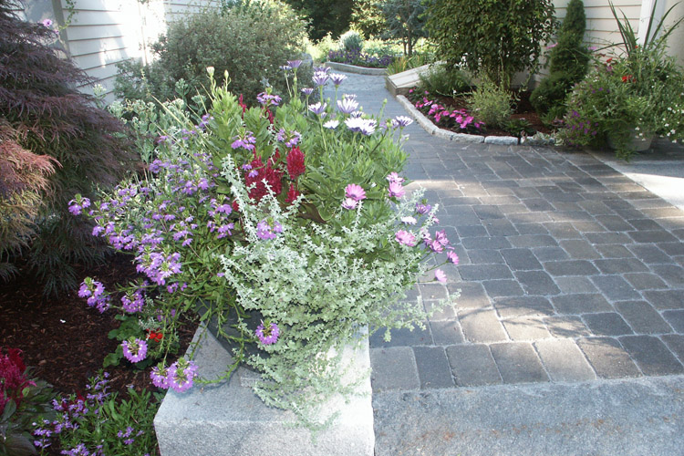 Paver Walkway with Granite Step