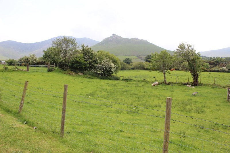 After Banbridge we headed East towards the Mourne Mountains....