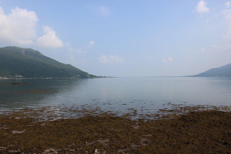 Shoreline at Rostrevor