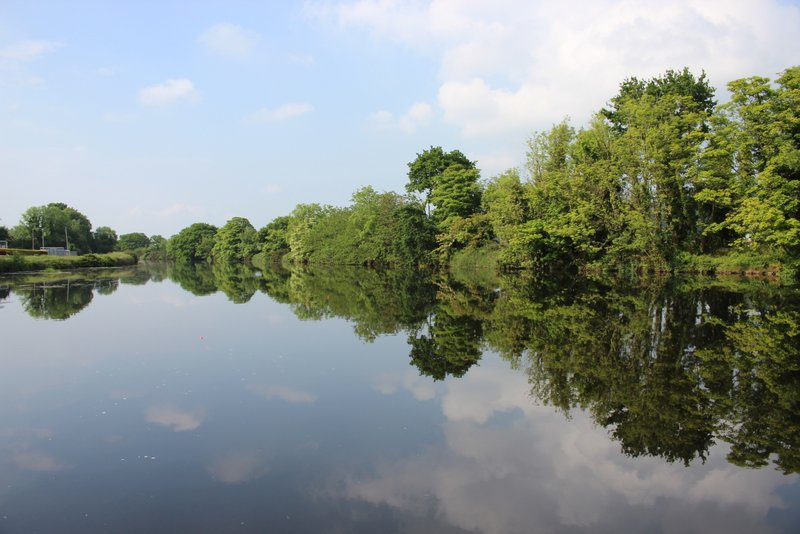 The Newry Canal