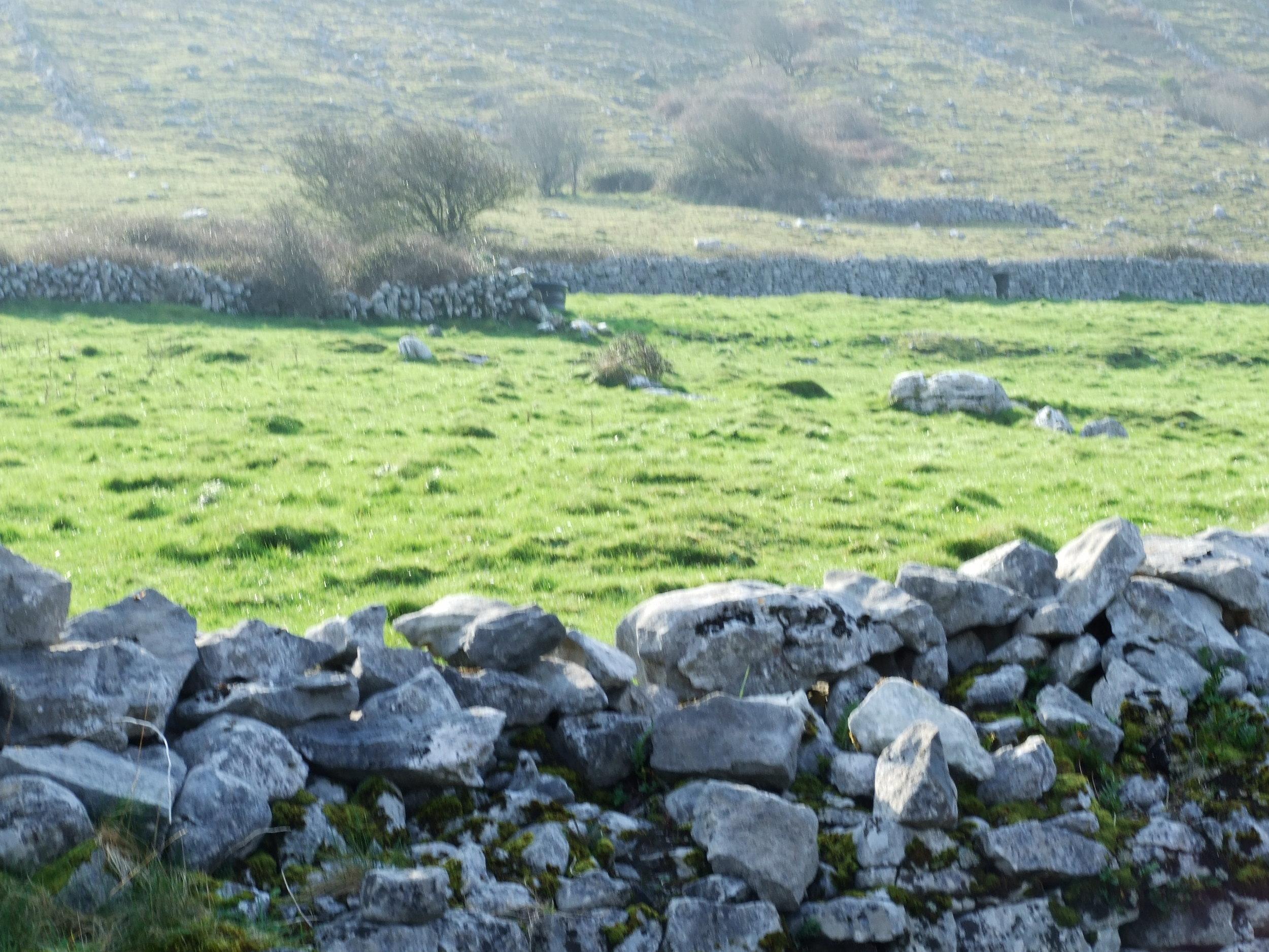 Burren Walls, Co Clare