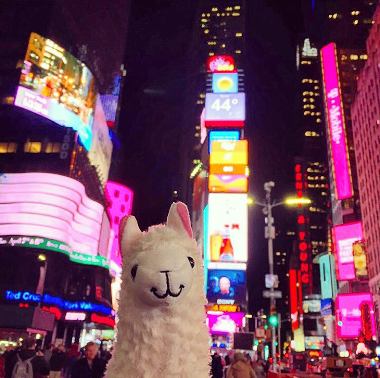 llamawithnodrama-timessquare nyc.jpg