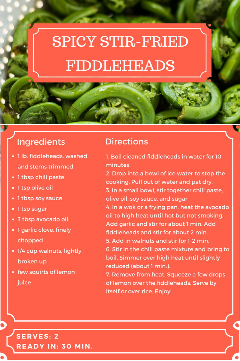 spicy stir-fried fiddleheads.png