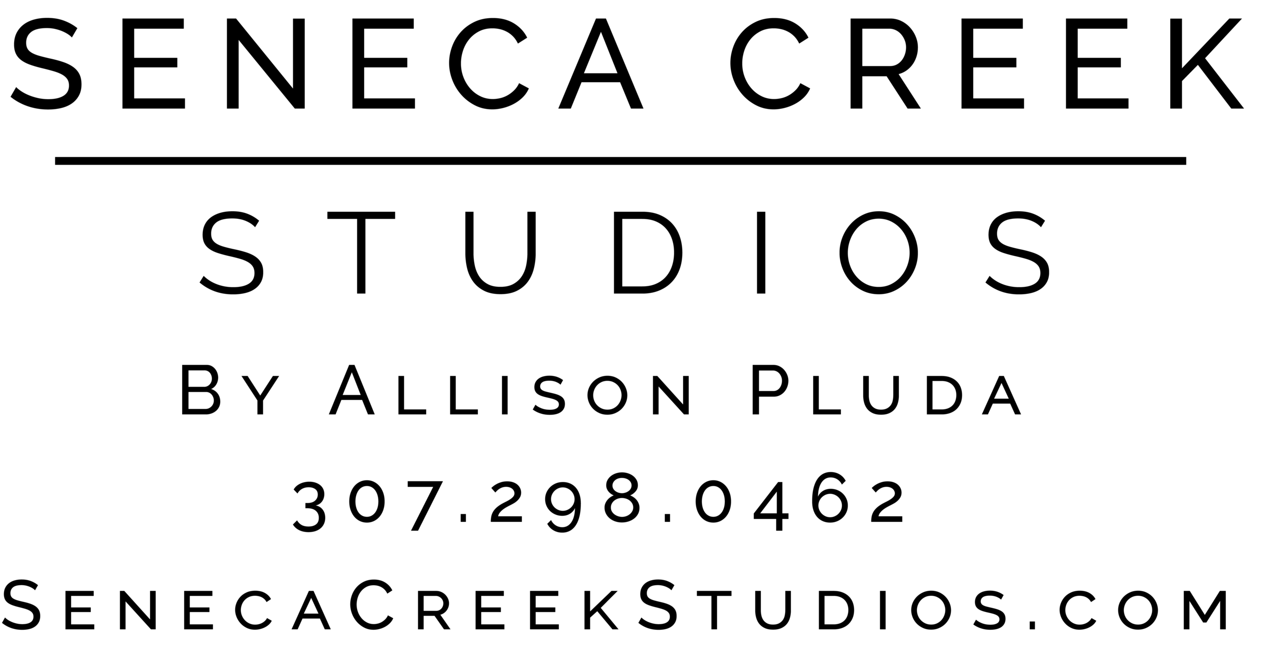 Logo Black Without Mountain Copyright Website Phone.png