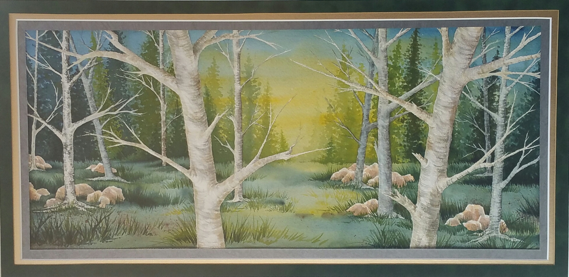 """Aspen Grove,"" 14x27, Original Watercolor Painting by Paula Wilson-Caziér / Honey Tree Studios"