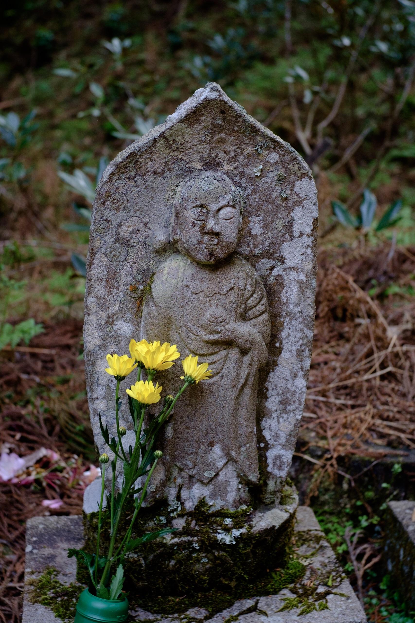 山奥にひっそりと潜む美しき「才能」。奈良県宇陀市室生寺にて