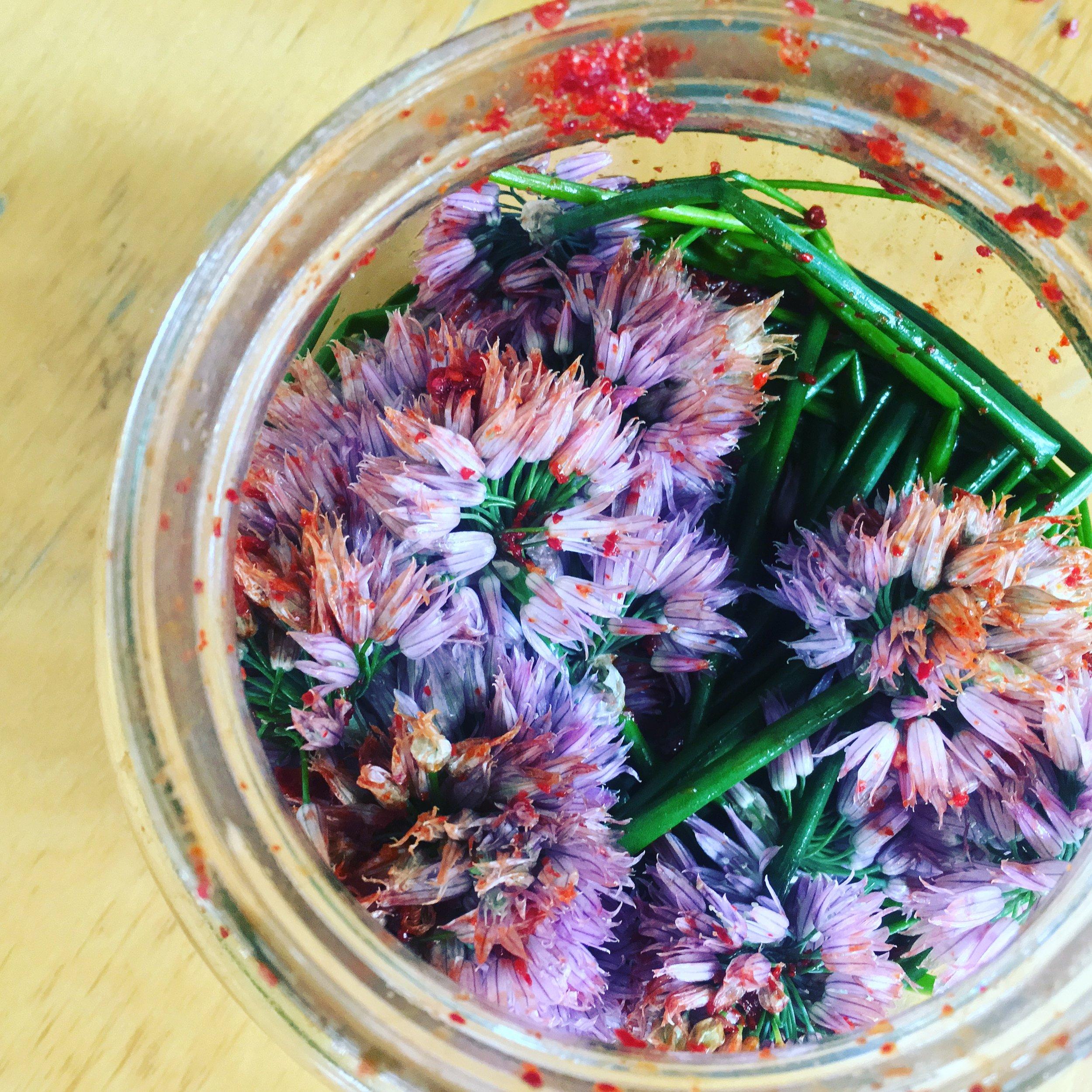 Recipe: Chive Blossom Kimchi