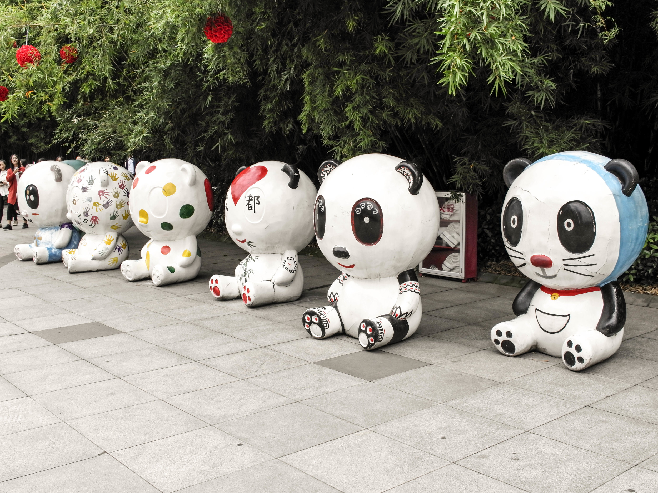 6. Chengdu, A Panda Lover's Destination -