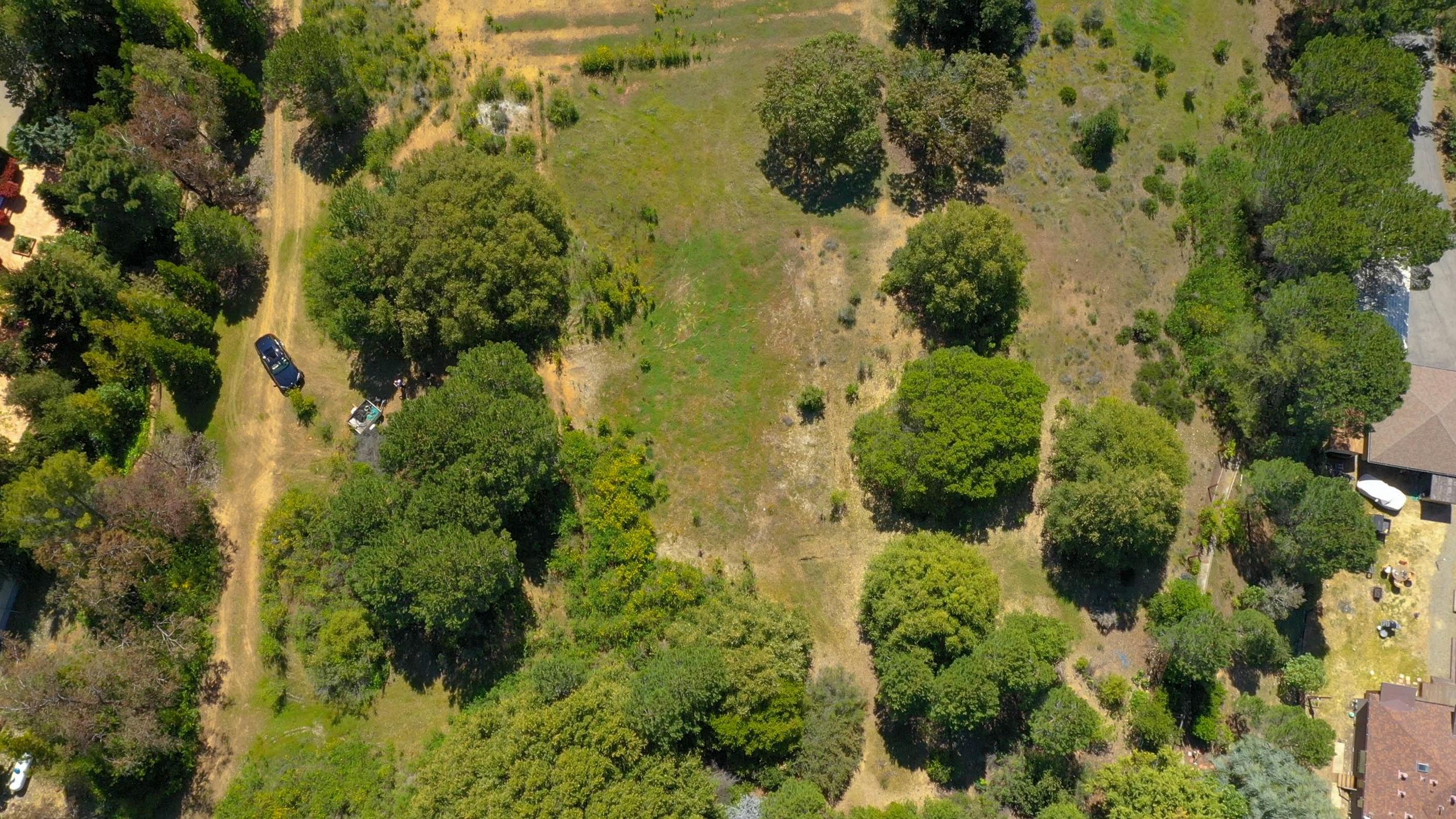 Monte Sereno Court Drone-2.jpg