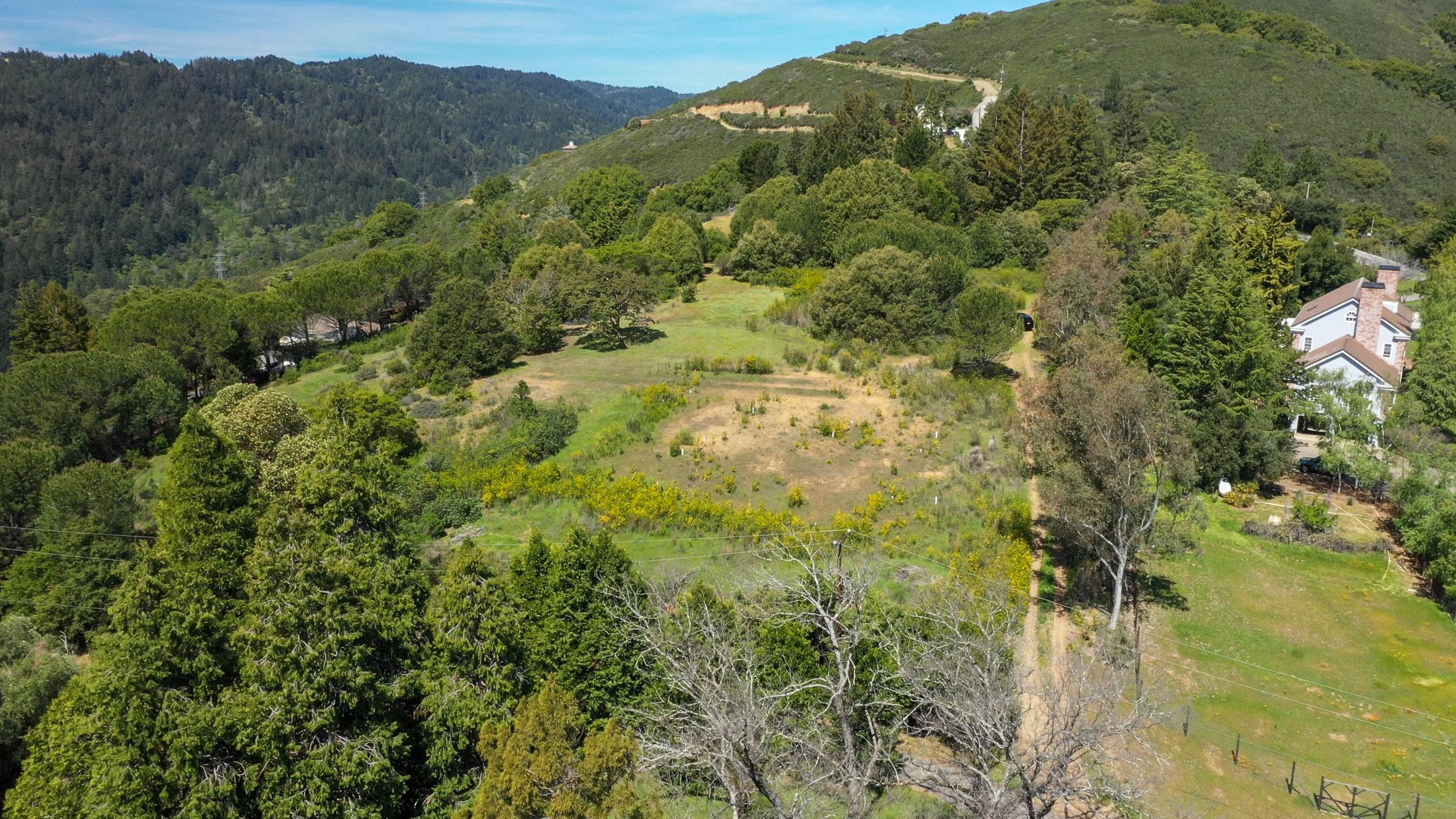 Monte Sereno Court Drone-7.jpg