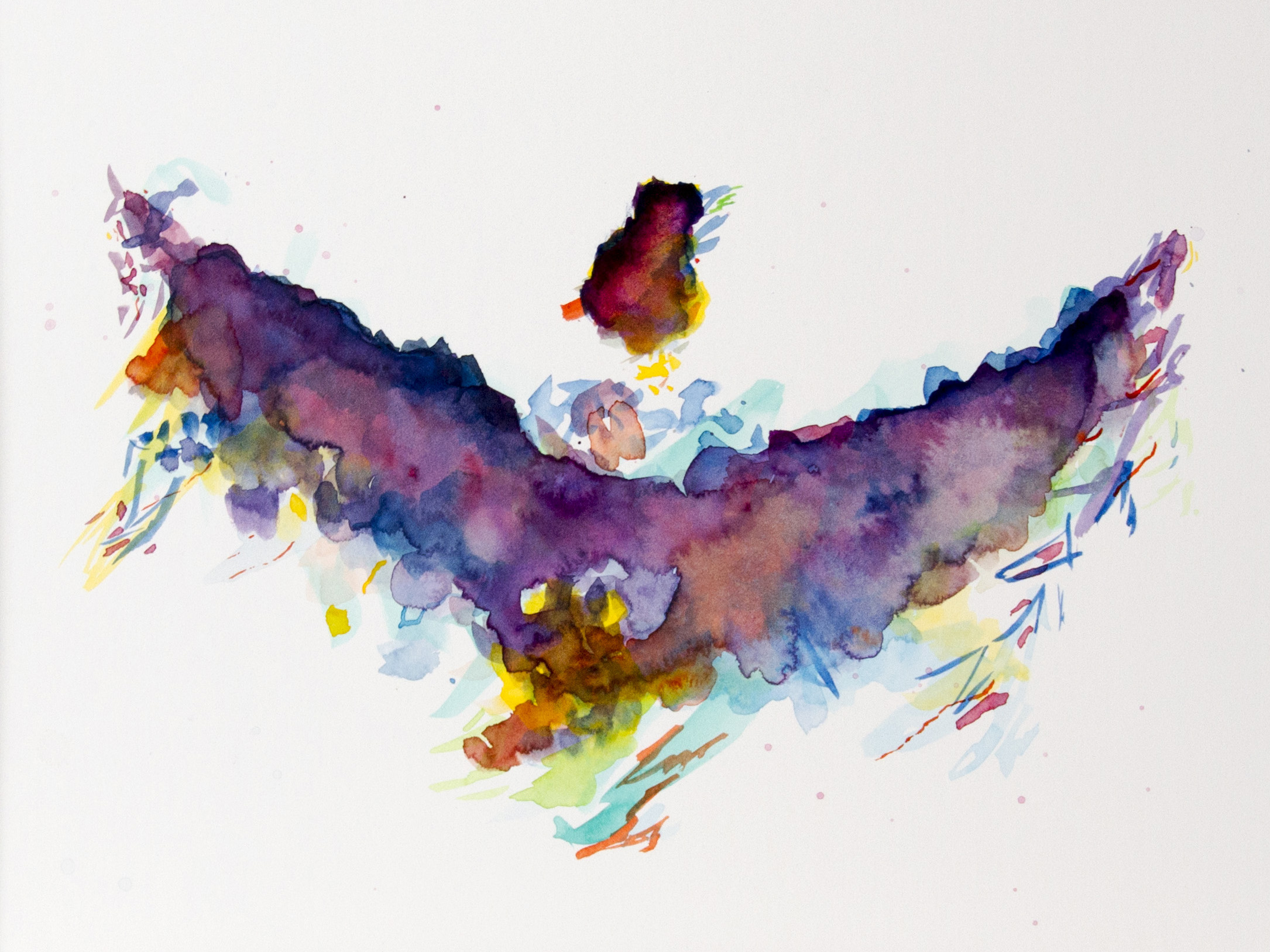 abstractwatercolorbirdframedwebsite.jpg