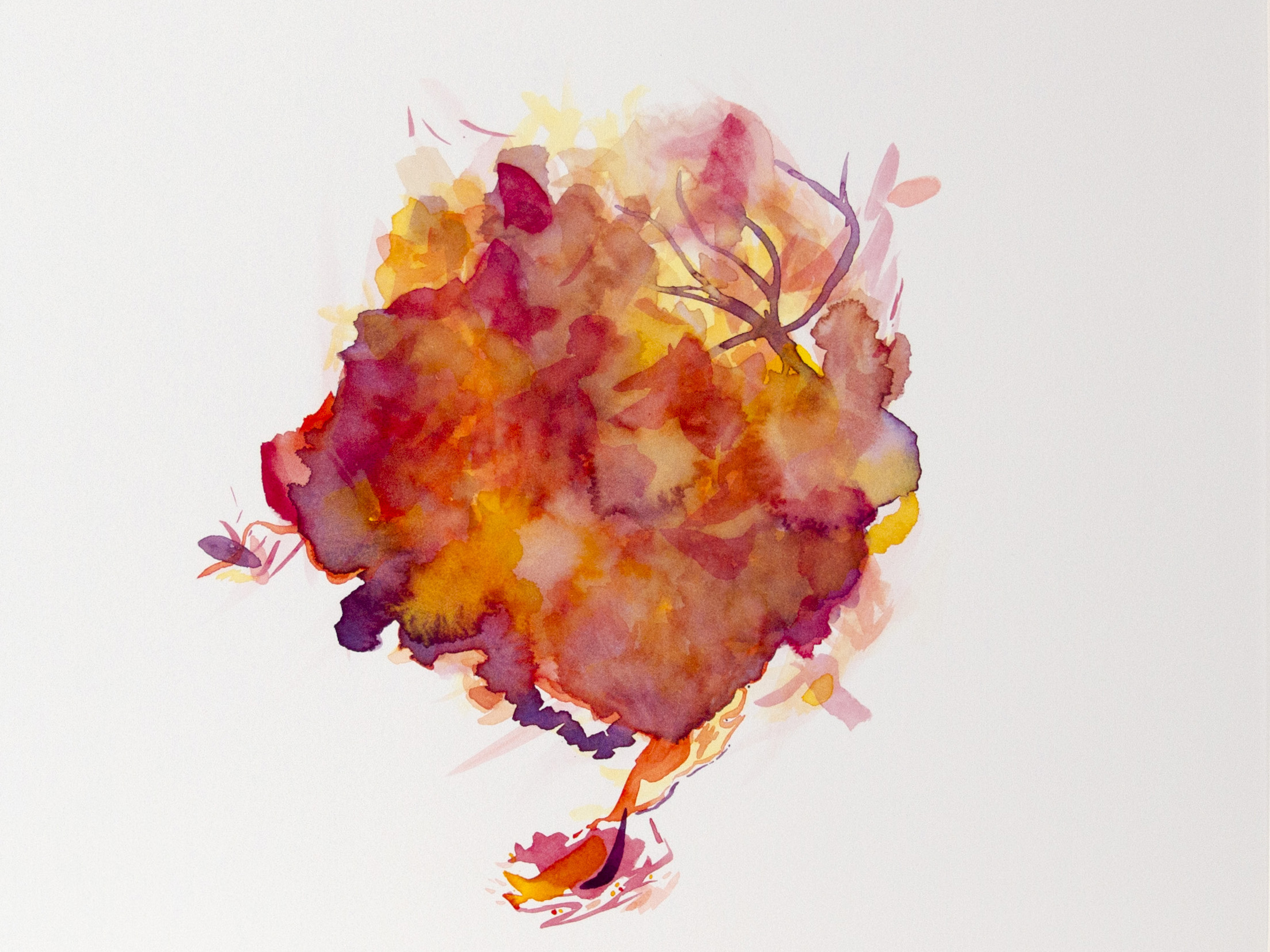 abstractwatercolorheartframedwebsite.jpg