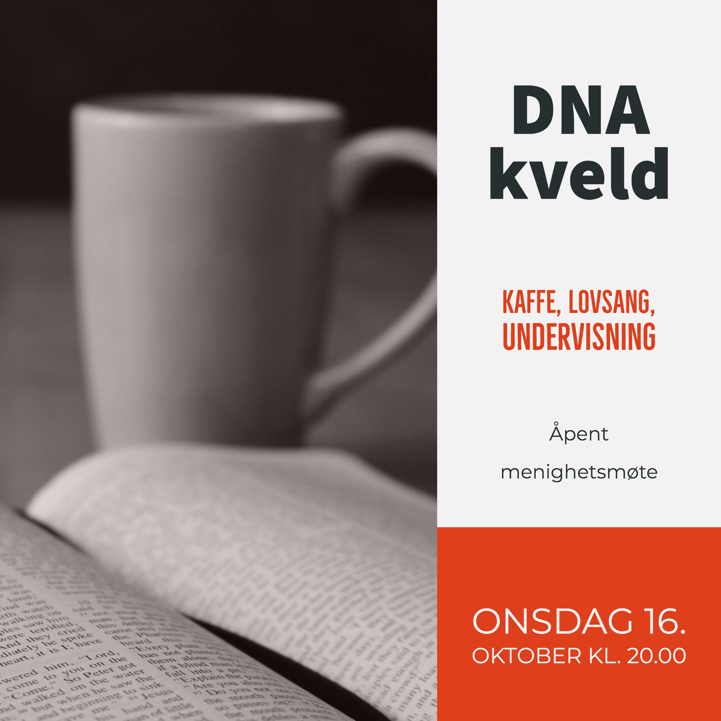 DNA - kveld gang.jpg