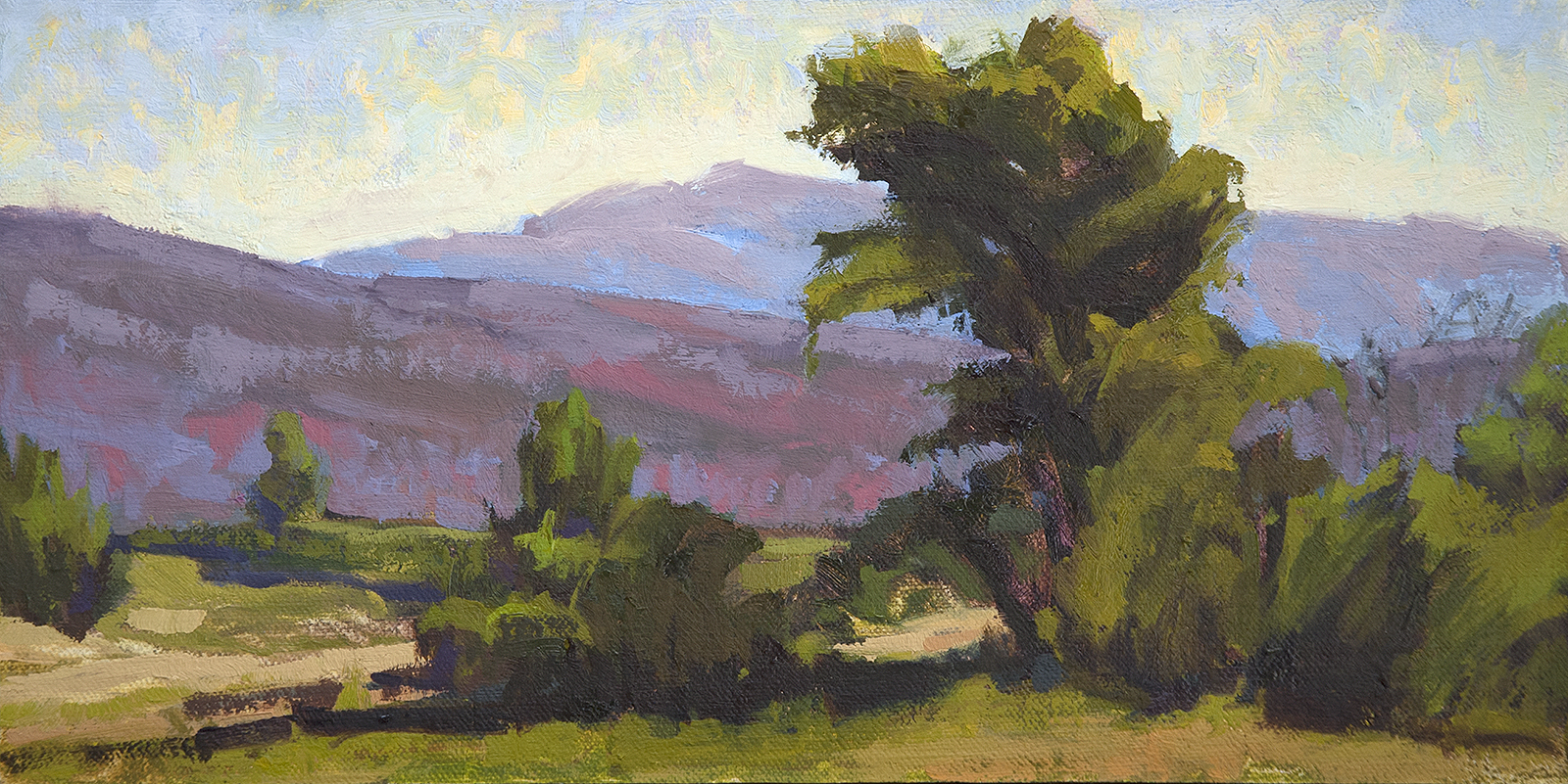 New Mexico Landscape III