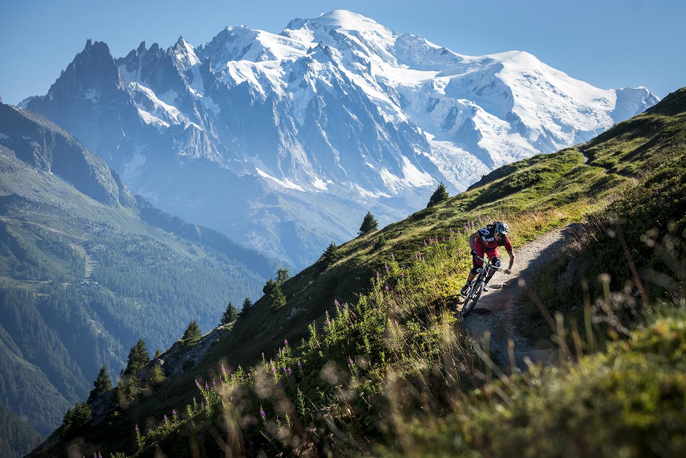 Alps HomePage.jpg