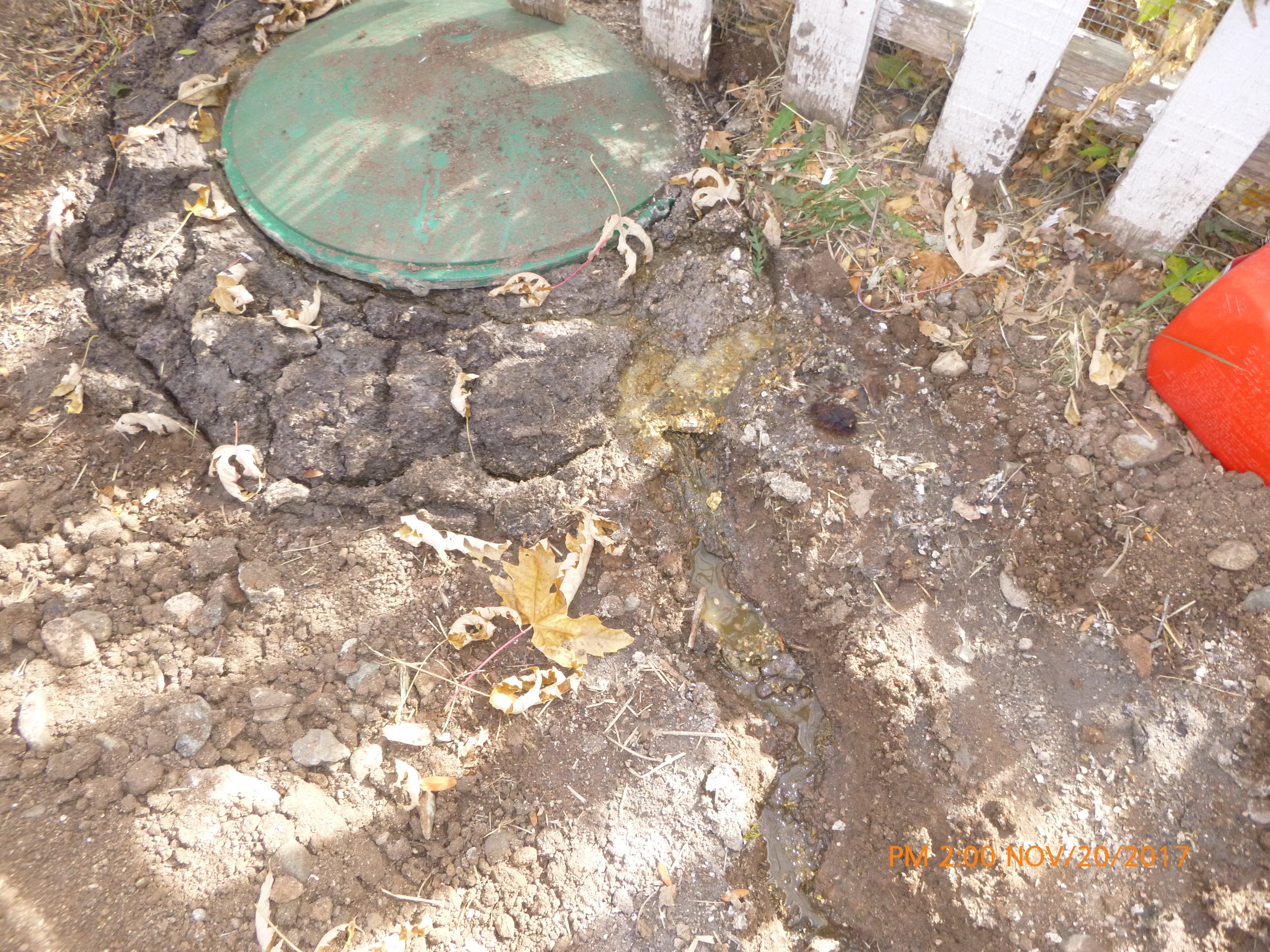 DON'T LET THIS BE YOU! - This is an extreme case of an overfull tank. Sewage is coming out of the tank access openings and spilling into the yard!