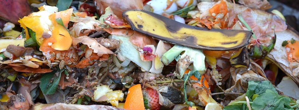 A local compost pile. Public domain.