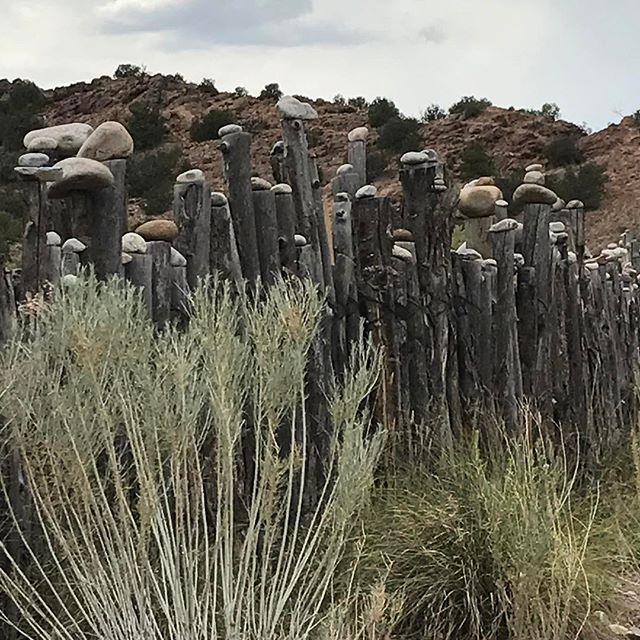 Ojocaliente#mineralsprings #desert#newmexico