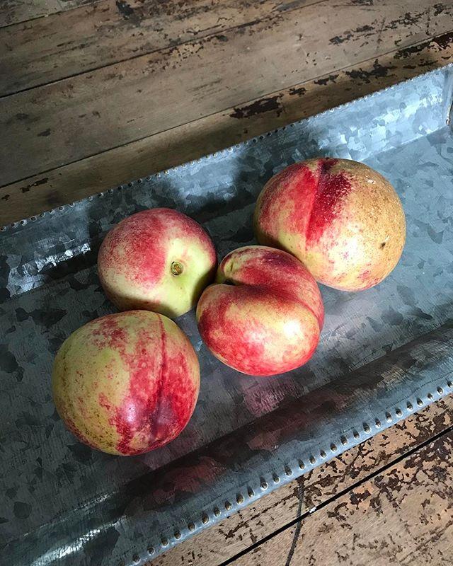 Nectarines #Summer #stilllife #farmersmarket