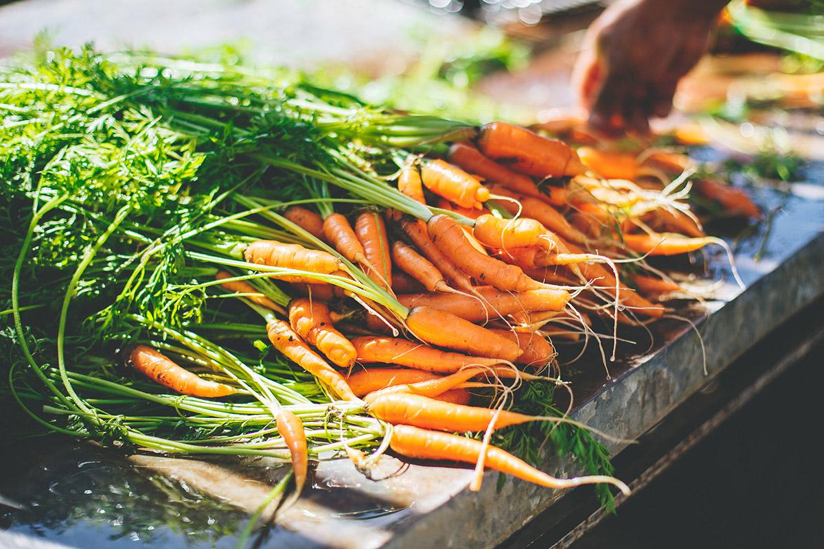 Flora-Farms-Private-Gardens-01.jpg