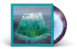 vinylpurple.jpg