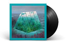 vinylblack.jpg
