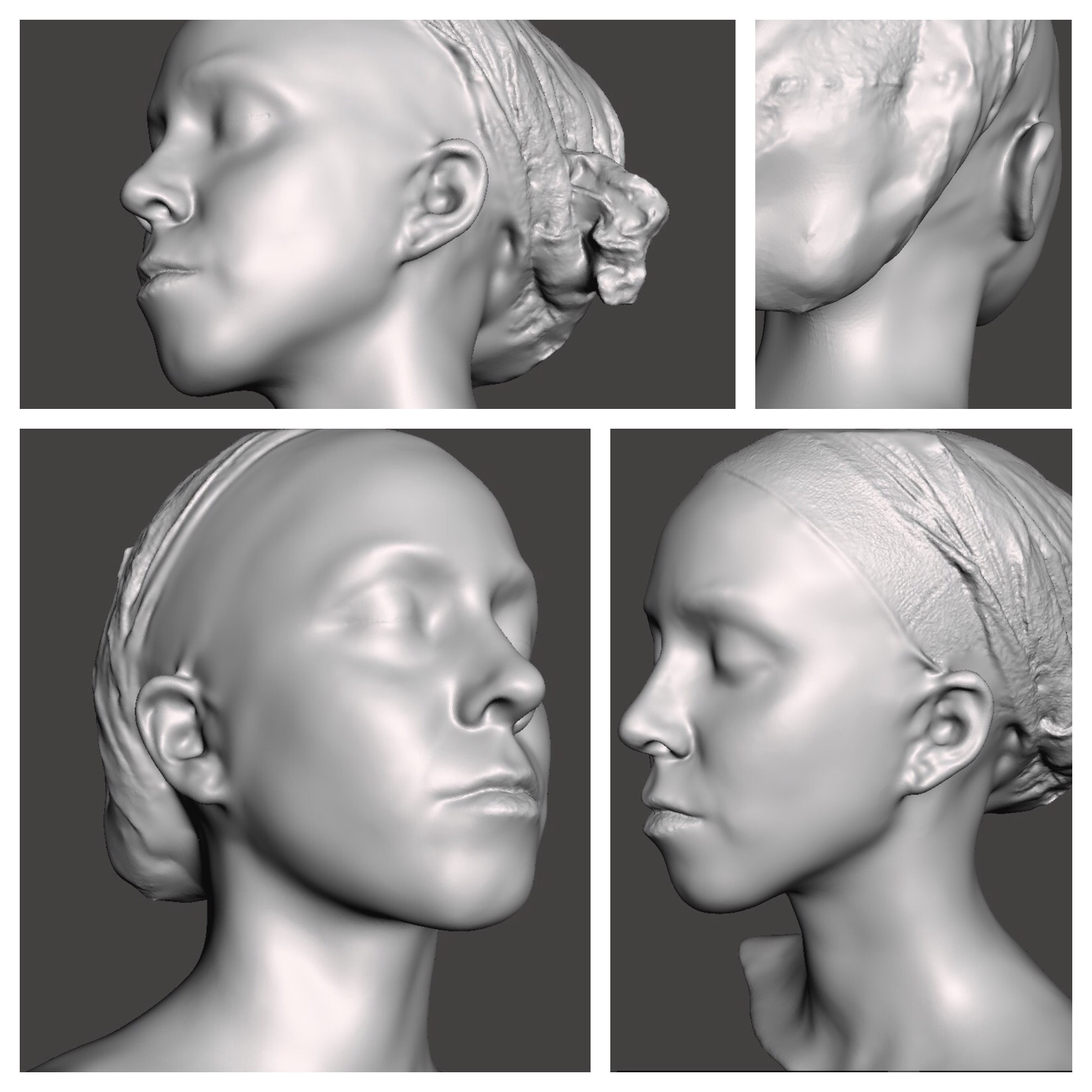 Fig: Digital 3D Portraits