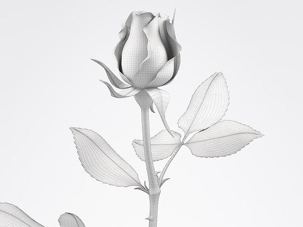 3d-printed-rose-geek-4