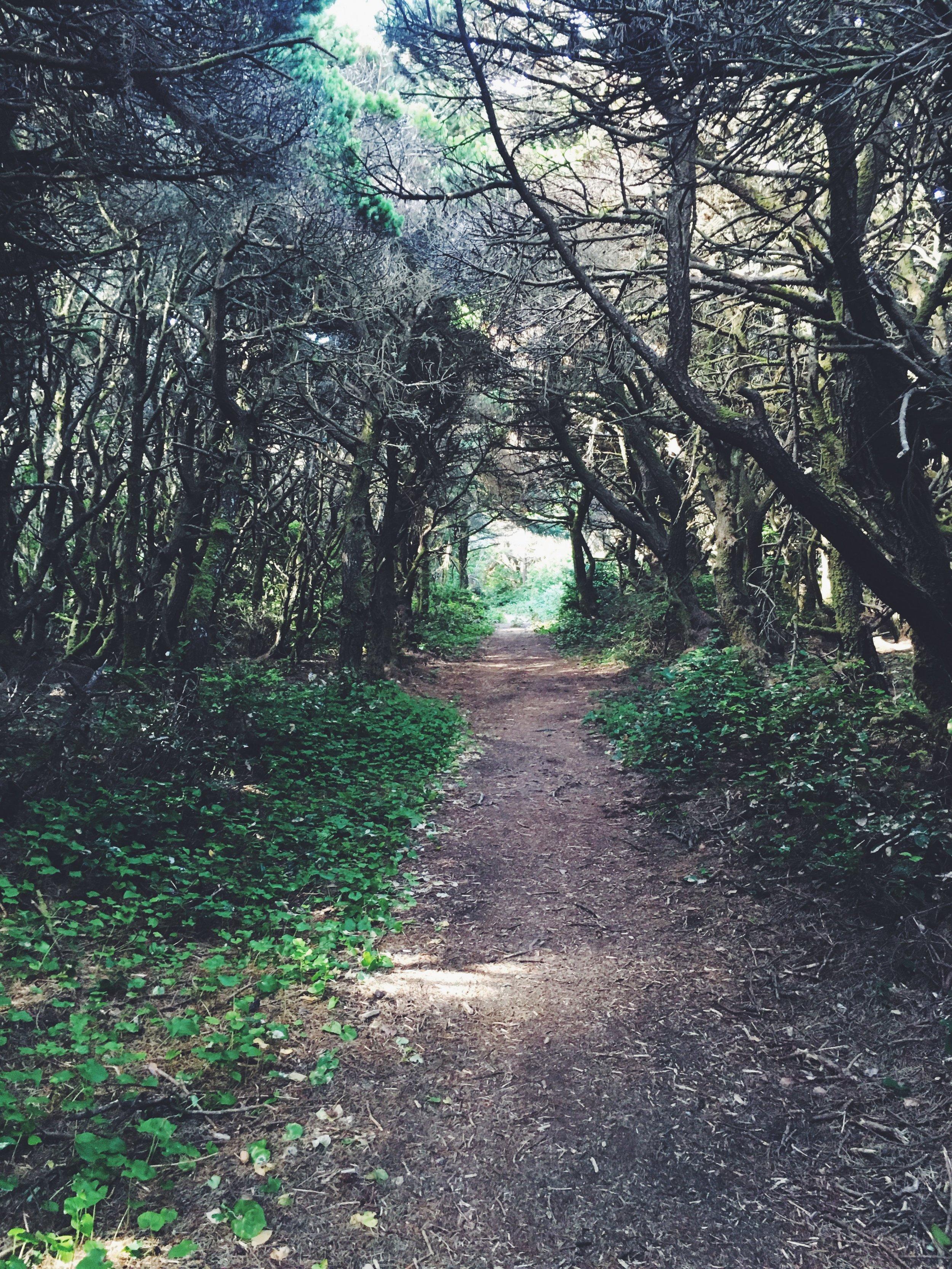 Lake Floras, Oregon Coast Trail