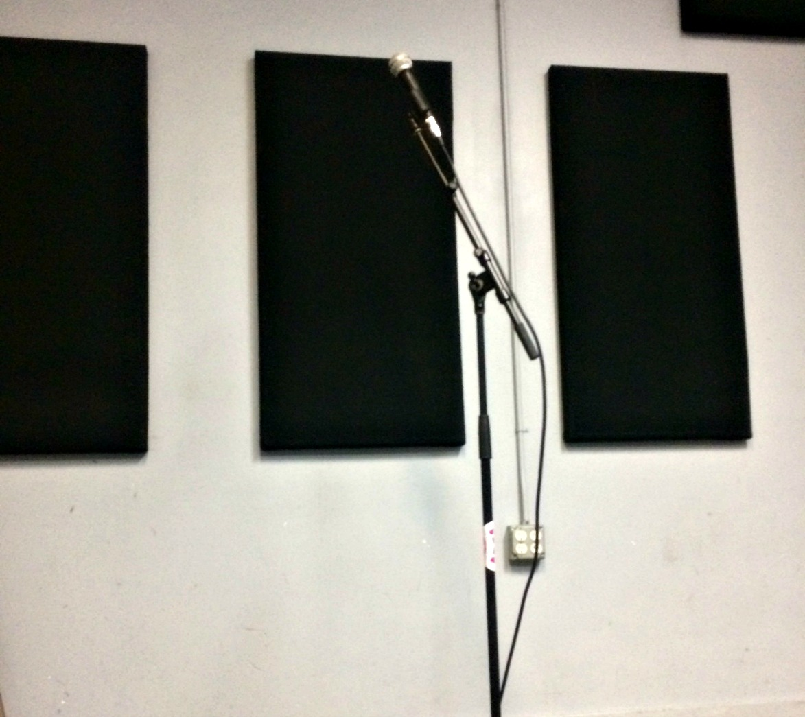 Microphone w/cable and stand - $15/day  Deposit: $200
