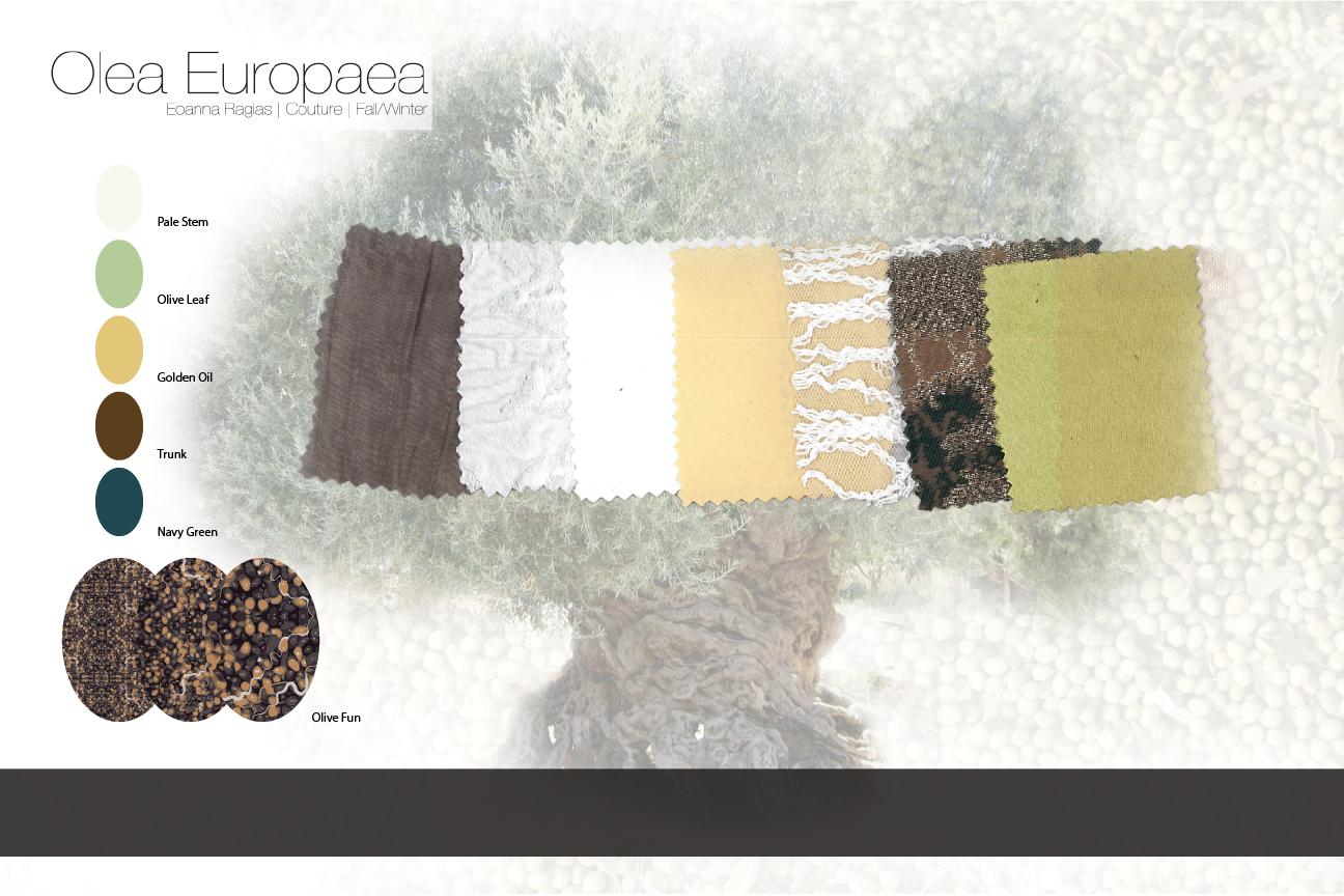 Fabric-Board-Olea-Europaea-01.png