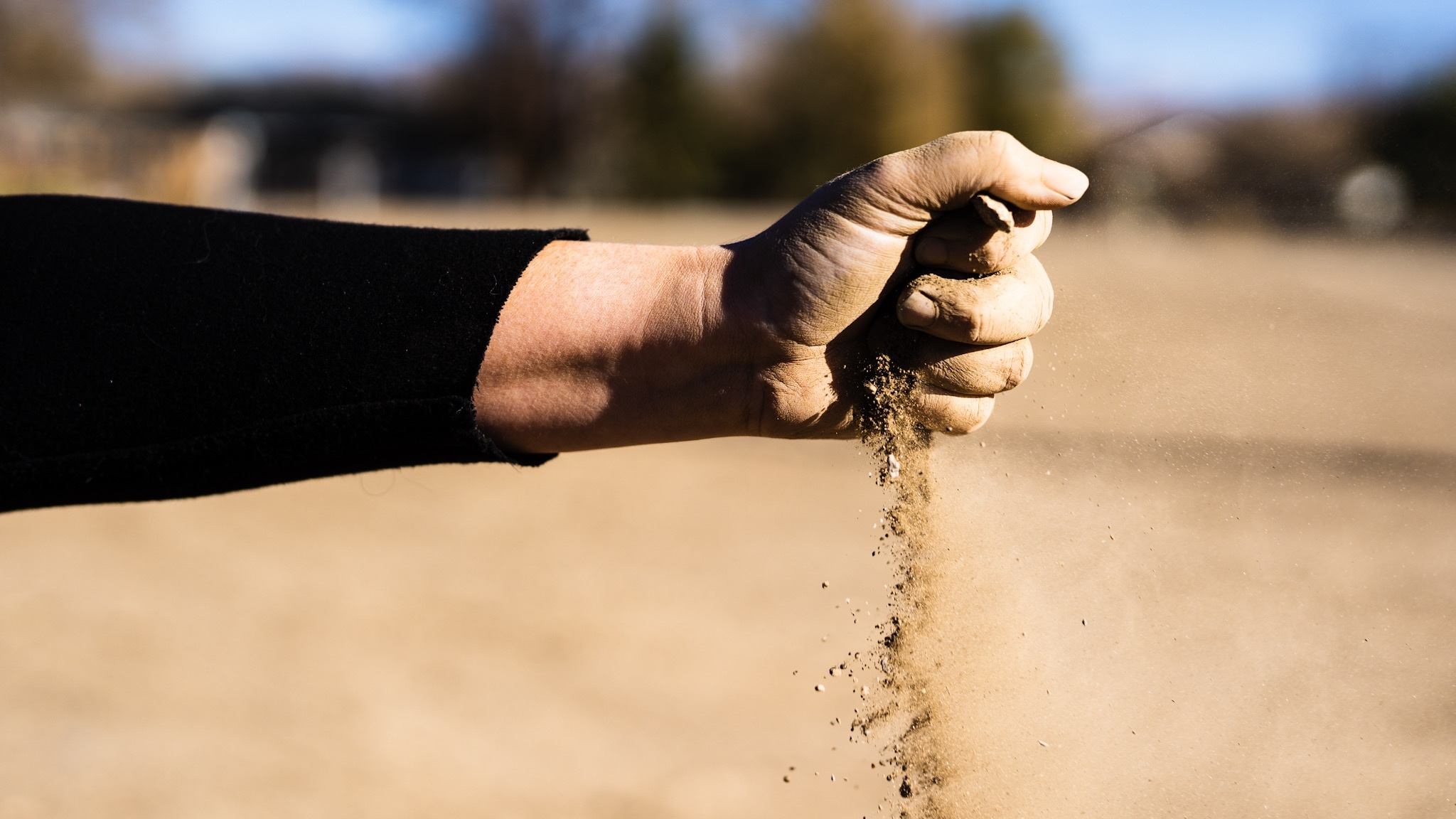 The dirt needs a lot of love, but hey! It's our dirt to love!