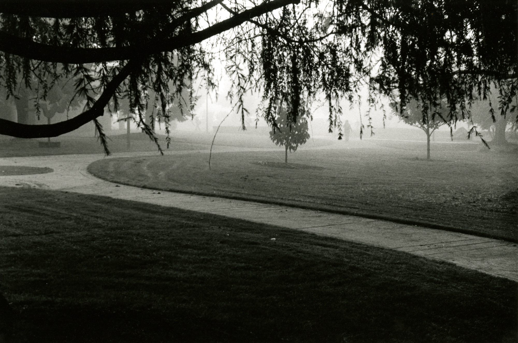Students walk through Clark College campus on a foggy morning.
