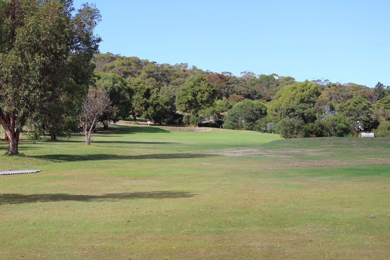 Hole 2     Plays longer than it looks. Lake Alexander forms the right hand edge of the fairway. Hitting into a medium sized flat green with a bunker behind.    Men: 180 metres, Par 3, Stroke Index 15   Ladies: 144 metres, Par 3, Stroke Index 15/33