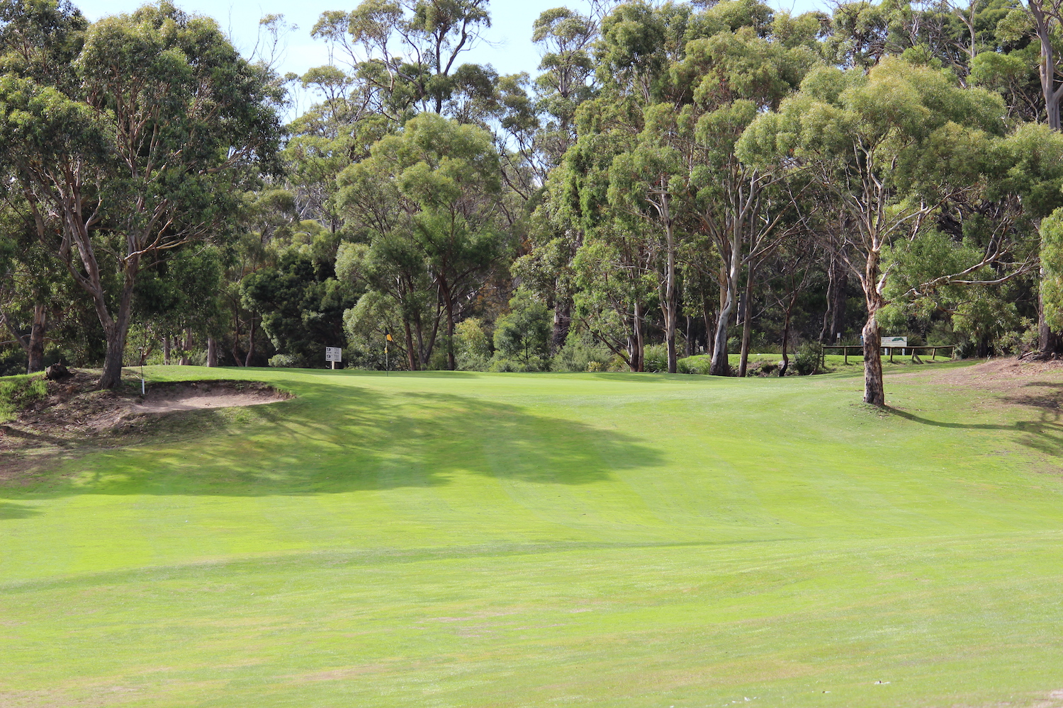 Hole 6    A tough par 3 with an elevated green with a bunker on the left, large tree on the right and steep ungroomed surrounds behind.    Men: 155 metres, Par 3, Stroke Index 11   Ladies: 117 metres, Par 3, Stroke Index 13/31